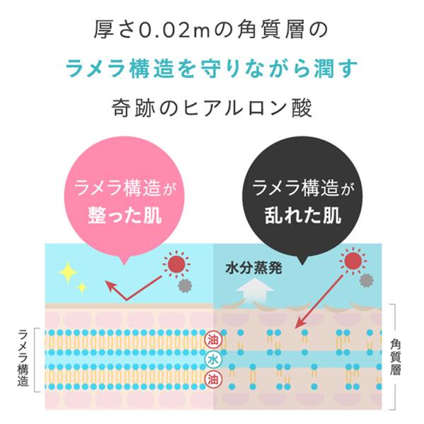 アオイココ(AoiCoco) ラメラ構造 成分
